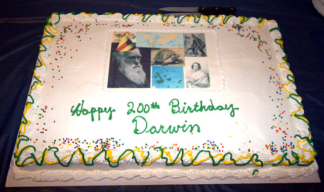 Darwin Cake